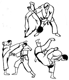 Jiu Jitsu Vlaardingen is een begrip in de regio Vlaardingen, Schiedam en Maassluis